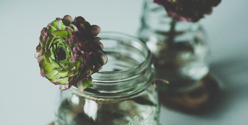 Jak zrobić ogród w słoiku, ogród w słoiku diy