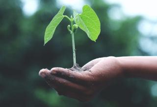 Ochrona środowiska a zarabianie