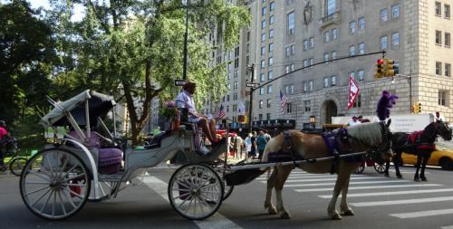 Atrakcje Nowy Jork - Central Park (1)